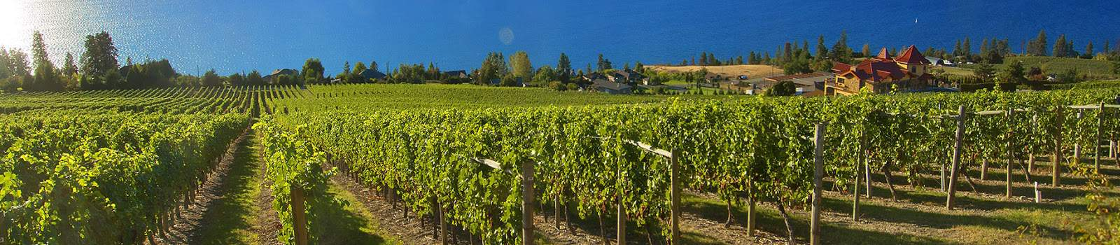 Grey Monk Winery in Lake Country - Photo Cred: Predator Ridge